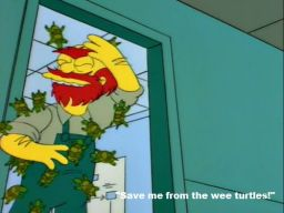 """Save the wee turtles!"", -""Bart's Girlfriend"""