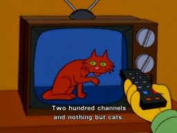 """200 channels, nothing but cats"", -""Wild Barts Can't Be Broken"""