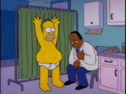 """Look at that blubber fly!"", -""Homer's Triple Bypass"""