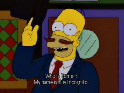"""Homer?  Who is Homer? My name is Guy Incognito."", -""Fear of Flying"""
