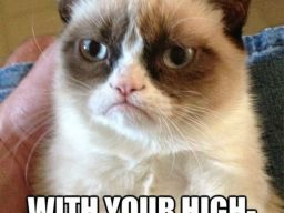 """Do not patronize me with your high-pitched baby voice!"", -""Grumpy Cat"""